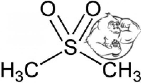 methylsulfonylmethane msm