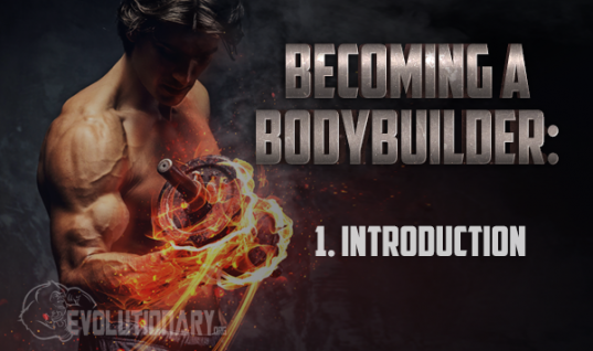 Becoming-a-BodyBuilder – Introduction