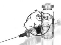 prohormones vs injectable steroids