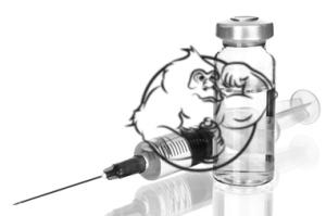 steroids prohormones