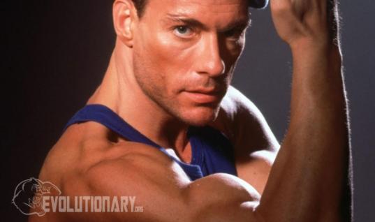 Jean-Claude Van Damme Steroid Cycle