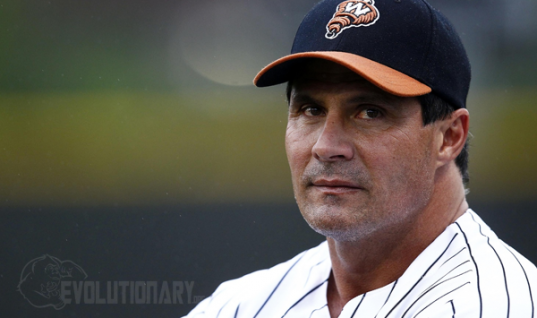 Jose Canseco Steroid Cycle