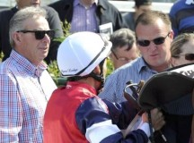 Horse Trainers Banned Over Cobalt Doping