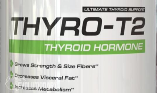 3,3-diiodo-l-thyronine (T2)