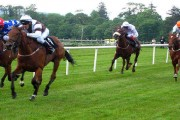 Lifetime Bans Proposed For Horse Doping