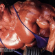 Mike Matarazzo Steroid Cycle