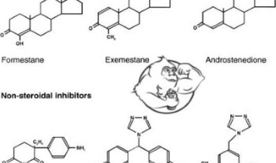 aromatase inhibitors list