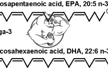 Fig 1. EPA and DHA