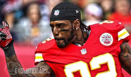 Dwayne Bowe Steroid Cycle