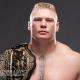 Brock Lesnar Steroid Cycle