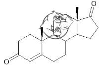4-Andro chemical structure