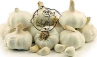 garlic Allicin