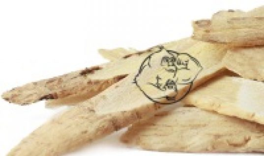 astragalus-root