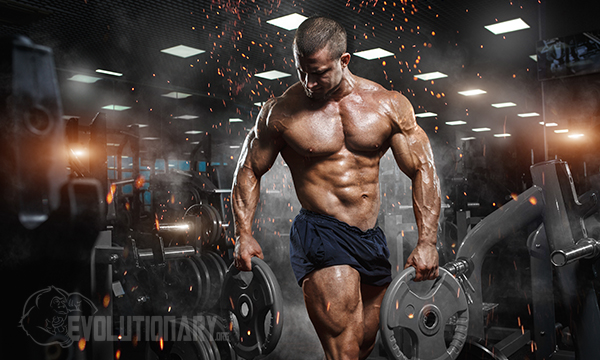 bodybuilding-workout