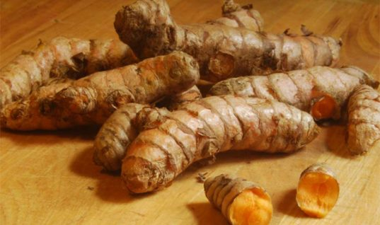 ban-turmeric-root