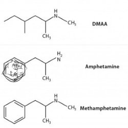 dmaa chemical structure amphetamines