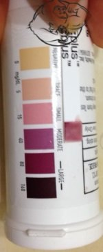 end of day 3 ketone urine test
