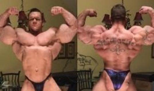 John Cena Steroids Cycle - Evolutionary org