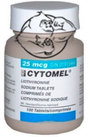 cytomel bottle