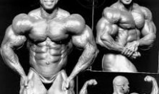 flex wheeler body