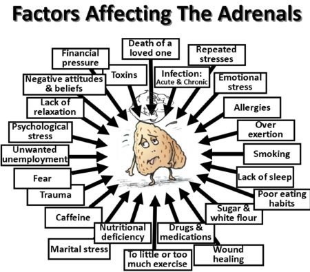 Adrenal fatigue causes