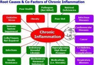 Causes Inflammation