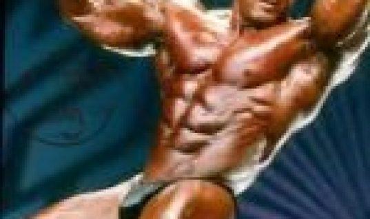 Milos Sarcev body