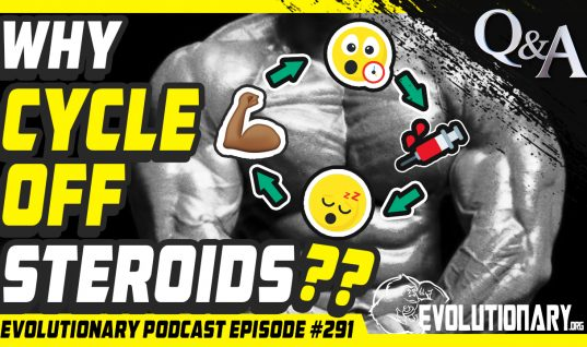 Evolutionary Podcast Episode #291 – [Q&A] Why cycle off Steroids