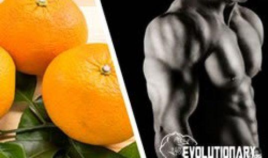 evo-Citrus aurantium