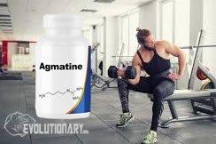 agmatine gym