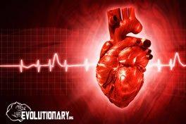 evo-blood-pressure