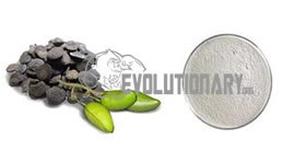EVO-Griffonia Seeds