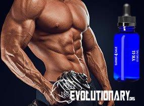 EVO-increases muscle