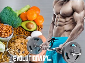 EVO-Vitamin B9 - vegetables