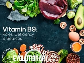 EVO-Vitamin-B9