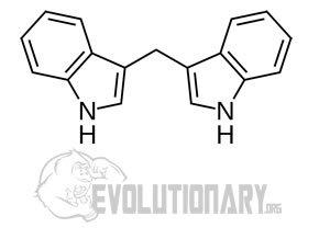 EVO-Formula-structure