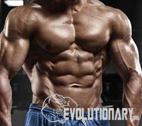 EVO-Milk Thistle is effective as antioxidant