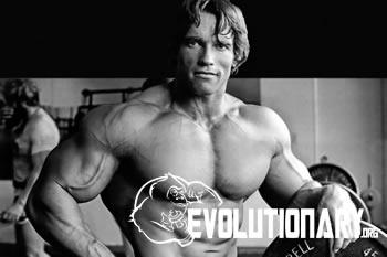 Arnold-Schwarzeneggers